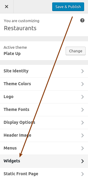 Screenshot indicating the Widgets section in the customizer